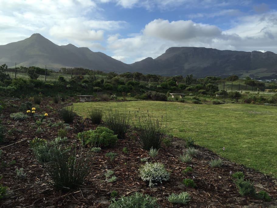 Views from our garden, across nature reserve looking at Chapmans Peak