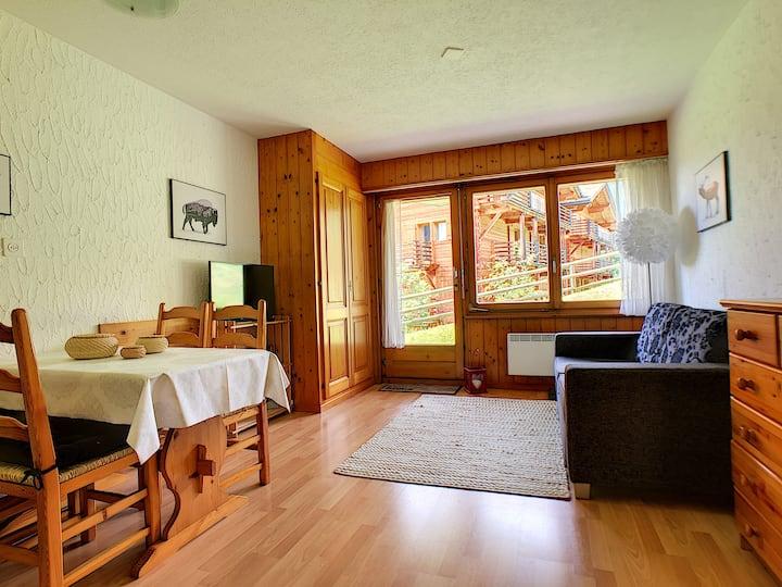 Appartement 1 chambre à coucher, WIFI, terrasse, animaux admis