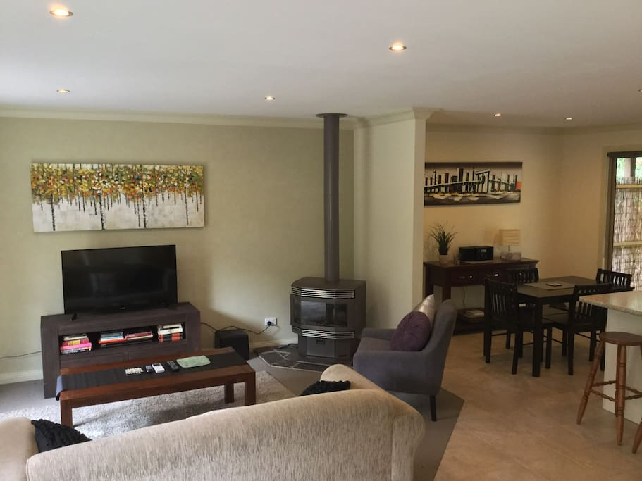 Large lounge with TV, gas fire and air-conditioner