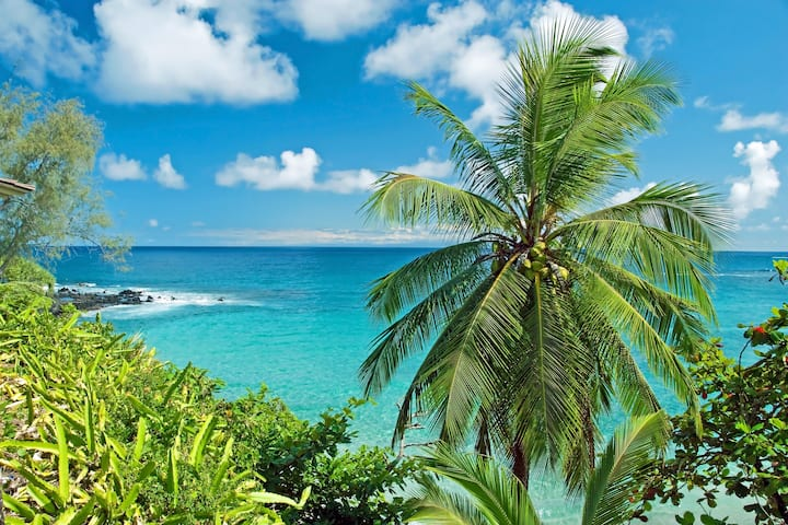 Beautiful*Direct Oceanview & *Best Beaches in Maui