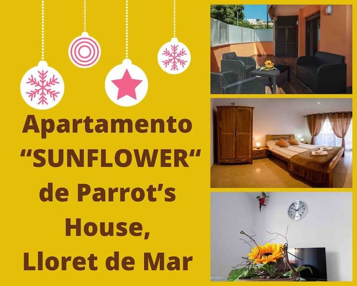 "Parrot's House ""SUNFLOWER""Apartment with parking"