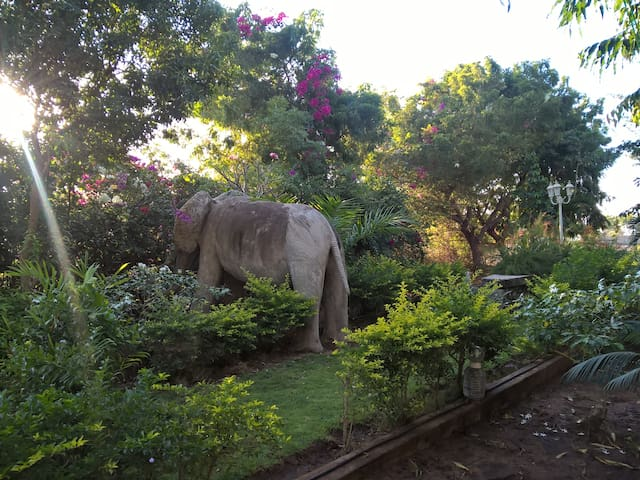 Friendly and cozy garden bungalow - Kigamboni - Bungalo
