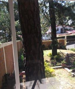 casa en el bosque :) - Huitzilac - Cabin