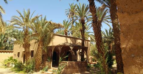 Your home in the oasis