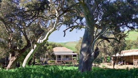 Brooklyn Farm - country experience by the sea