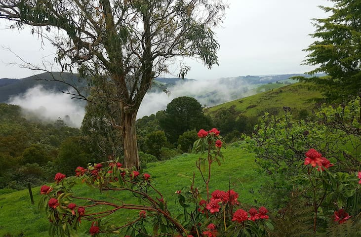 Wild Valley Gippsland Farm House - Budgeree - Bed & Breakfast