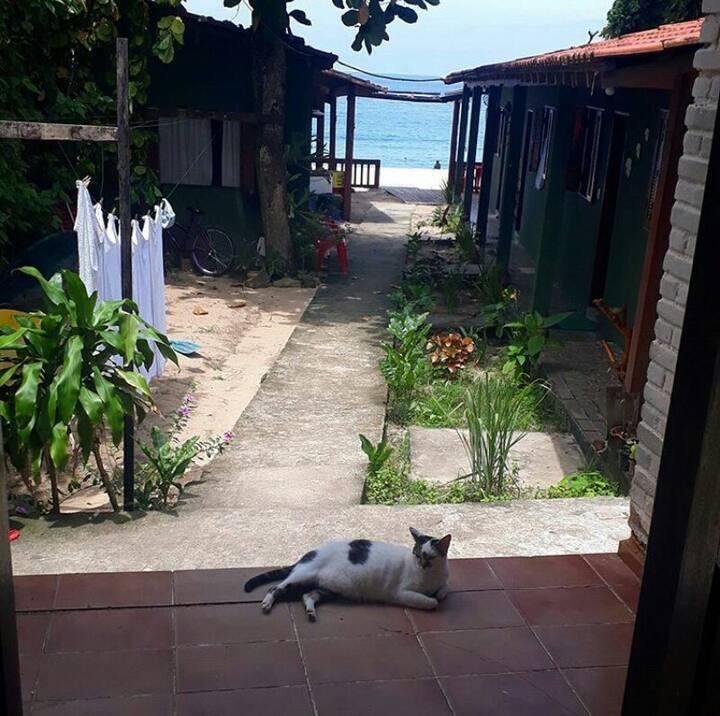 Lula 40° ( Suites pé na areia)