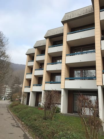 Bad Urach - Reutlingen - Metzingen - Bad Urach - Serviced apartment