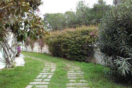 villa frisella - Dolphin Room - Monti D'arena-bosco Caggione