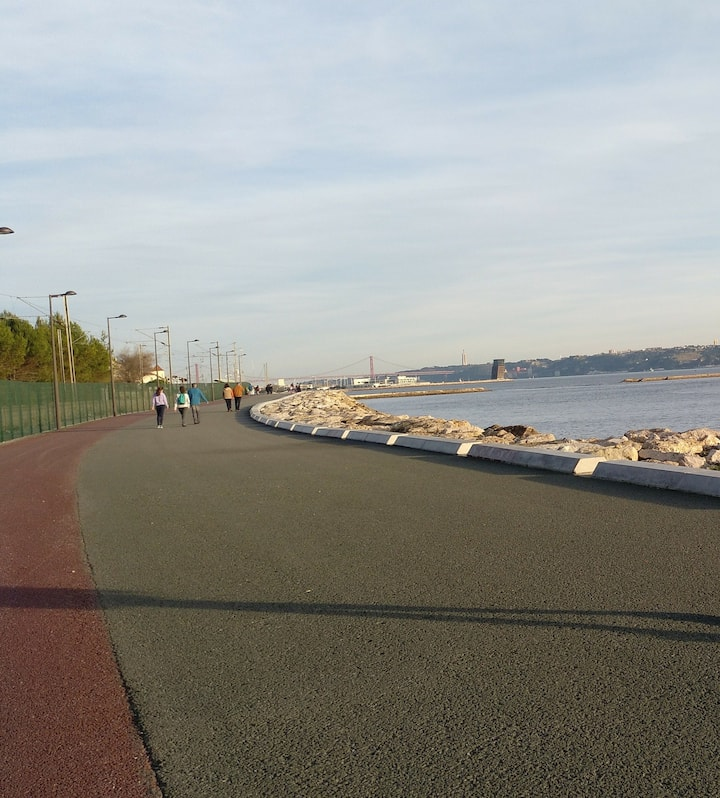 Nice dedicated bike lanes