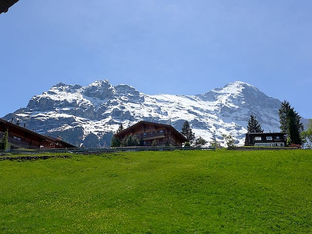 Next to Eiger, Jungfrau! Amazing! - Grindelwald - Appartement