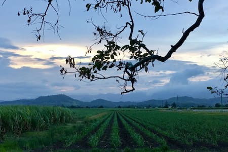 Farmstay close to Murwillumbah. - Tygalgah - 獨棟