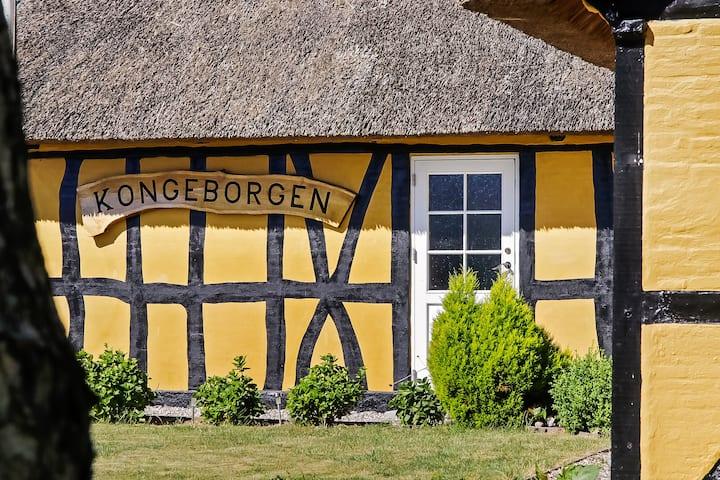 Kongeborgen