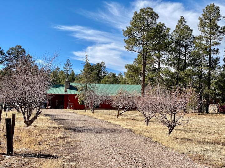 Cozy Red Cabin with RV Parking & Cleanout Sewer