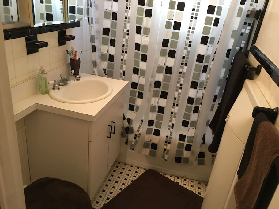 Bathroom with rainfall shower-head and full bathtub for those that need to relax after spending time out in the Big Apple! There are first aid supplies such as band aids, Neosporin, and alcohol in the cabinets.
