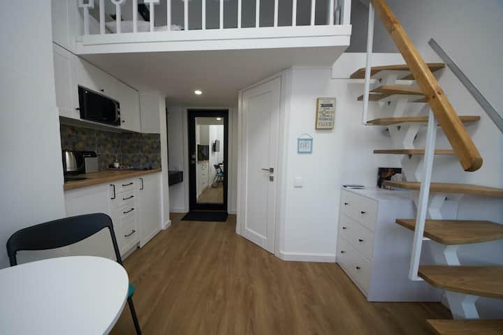 1 - Дворівневі смарт апартаменти. Парк Олександрія
