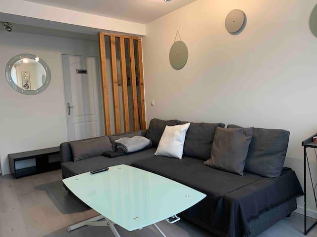 Bel Appartement Proche CDG/PARIS/ASTÉRIX/PARC EXPO