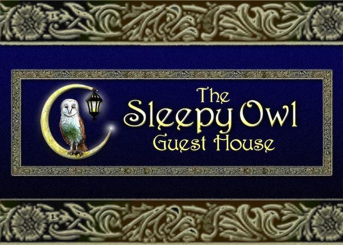 the Sleepy Owl (Family Friendly) Guest House