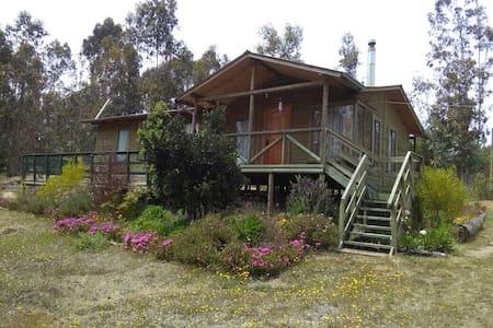 Parcela ideal para descanso en Totoral, El Quisco