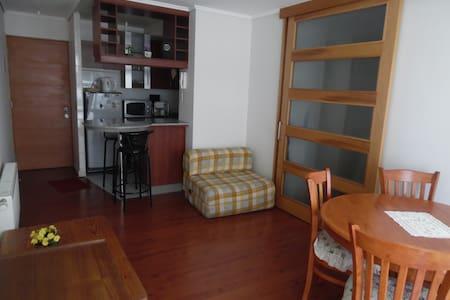 Iluminado y cómodo departamento en Ñuñoa - Ñuñoa