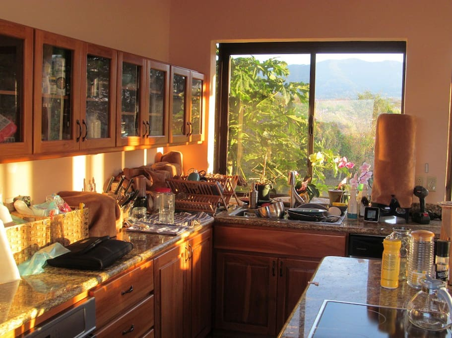 Gourmet kitchen with all teak cabinets, fully equipped