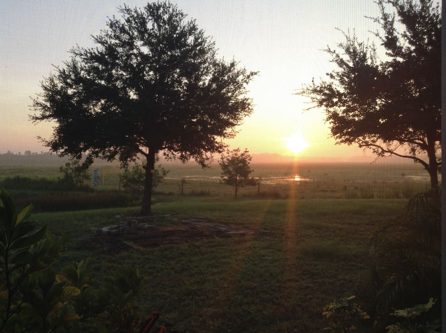 Sunrise in the beautiful backyard, view from the porch.