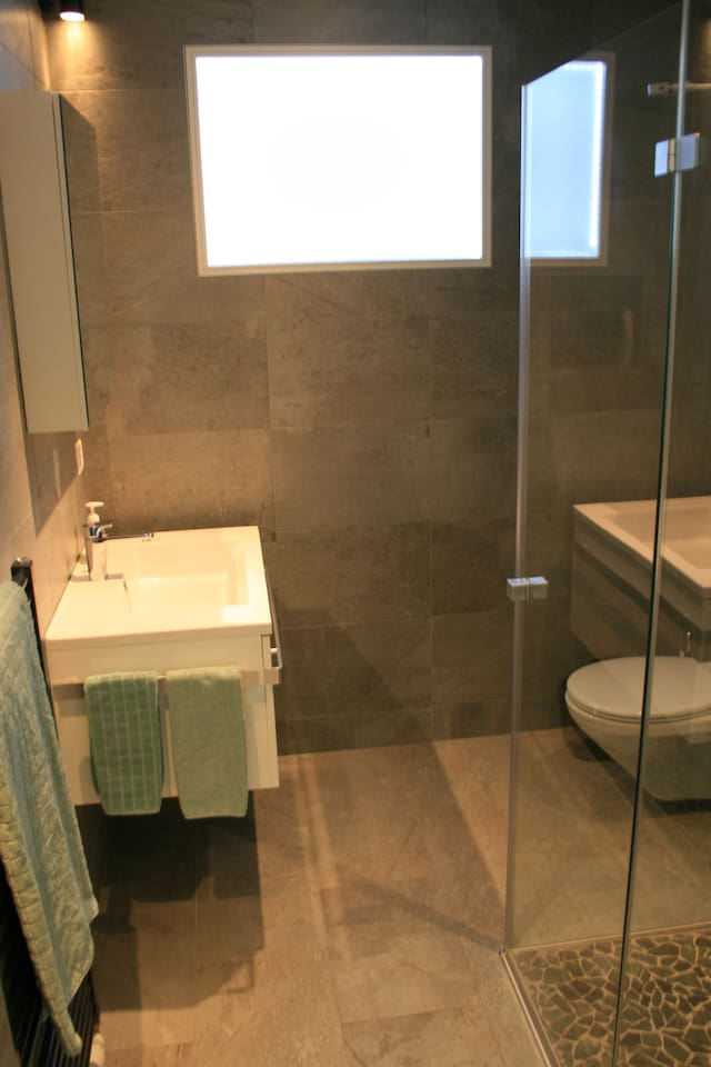 Master bedroom's adjoining  shower and toilet.