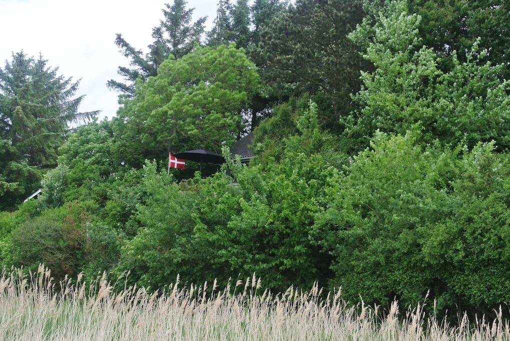 Hytten i skjul mellem træerne på skrænten (foto fra privat bro)