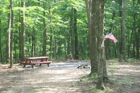 Primitive Camp Sites In The Hills Of WVA Site 5B