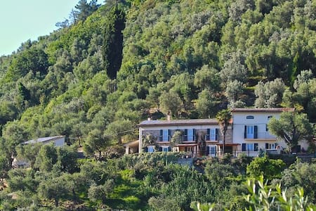 Pisa/Lucca - Olive Grove Houses & Great Pool-Wow! - San Giuliano Terme - House