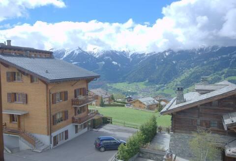 Simple apartment in Verbier