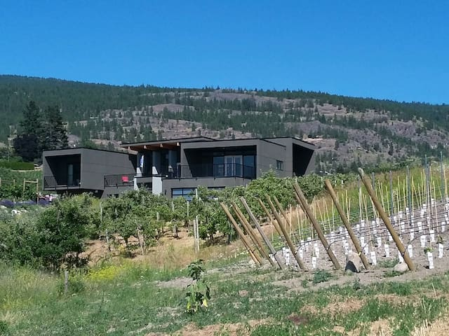 Luxury home on vineyard in Beautiful Naramata