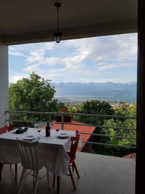 Telavi gæsteværelse med fantastisk udsigt over bjergene