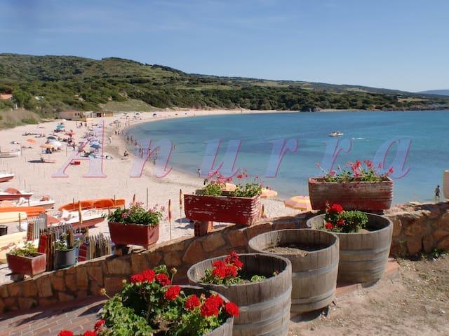 Sardinia:Isola Rossa-30m from sandy beach-apt1 - Isola Rossa - Apartment