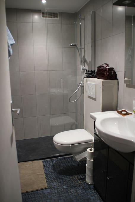 Salle de bains entièrement rénovée.