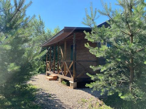 Уютный дом с террасой в окружении природы