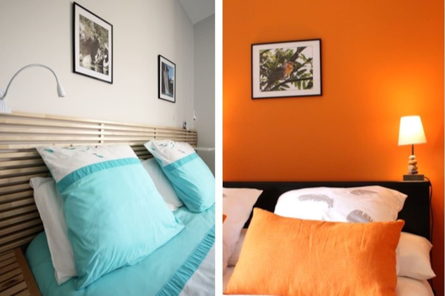 Turquoise ambiance Clapotis Ambre ambiance plume