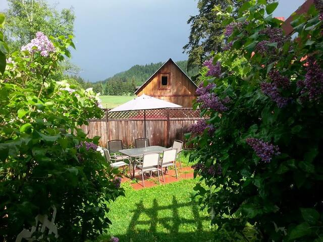 Cozy 1 room Ceilidh Cottage - Clearwater - Bed & Breakfast