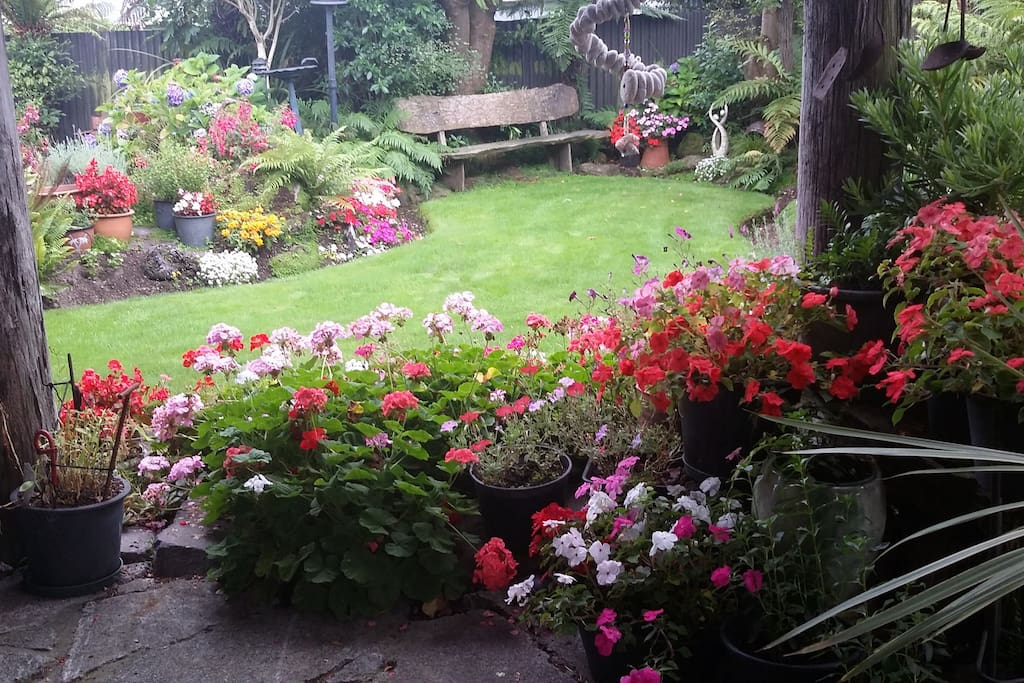 Summer garden.