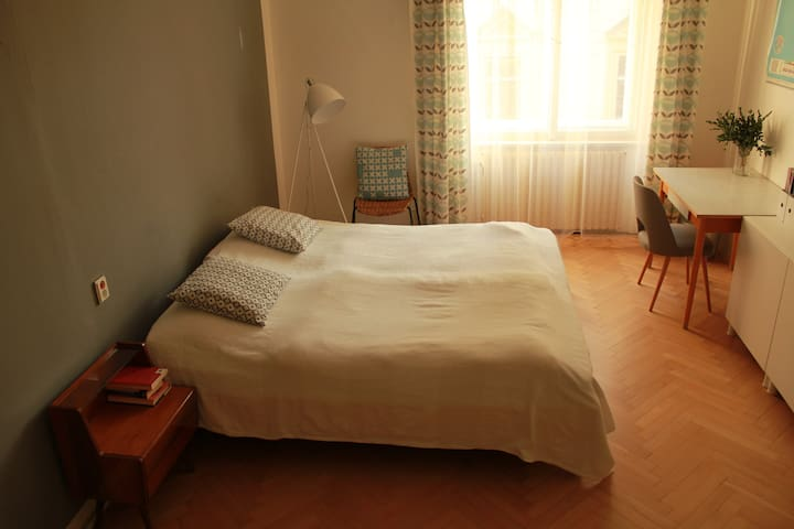 Spacious room in the flat 12 min to the centre - Praha - Apartemen