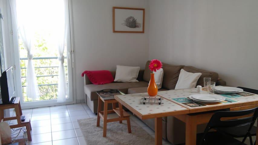 Appartement Lumineux et Calme en Ville (+parking) - Toulouse - Lägenhet