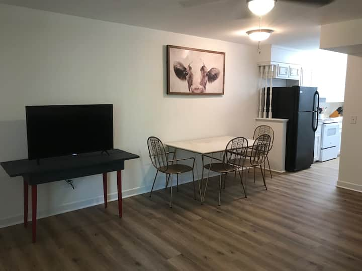 Great Condo in Downtown Columbia