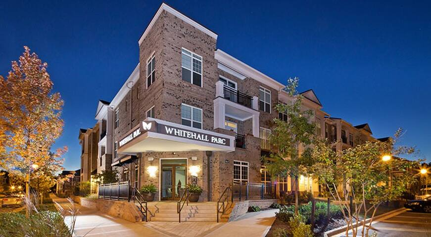 New South Charlotte - 1 Bedroom - Charlotte - Apartment