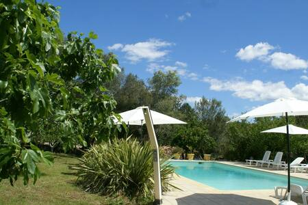Modern Holiday Home in Porto-Vecchio with Pool