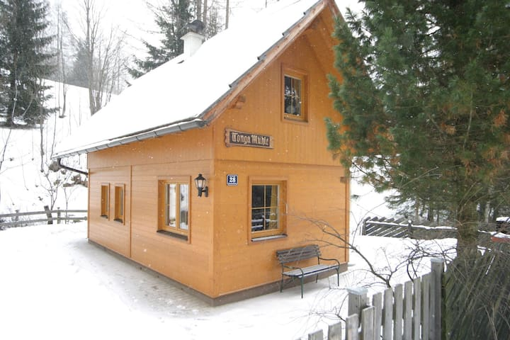 Cosy Holiday Home in Carinthia near Ski Area