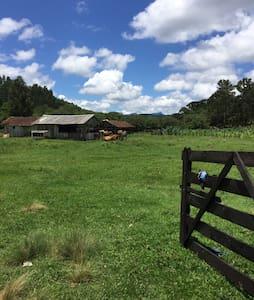 Casa de campo rústica e pesca no riacho e Capivari