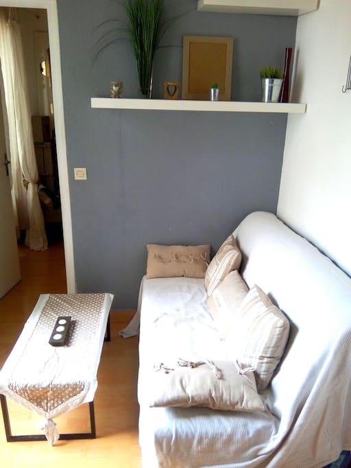 Le salon avec un canapé-lit et une télé
