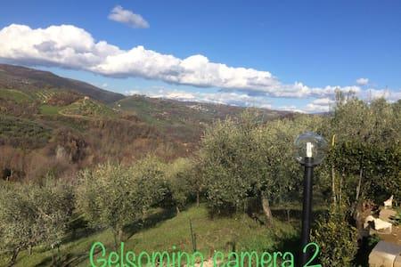 B&B IL GELSOMINO - STANZA 2  SENZA BALCONE