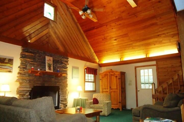 Secluded cabin near Brevard, Pisgah  & DuPont - Pisgah Forest - Mökki