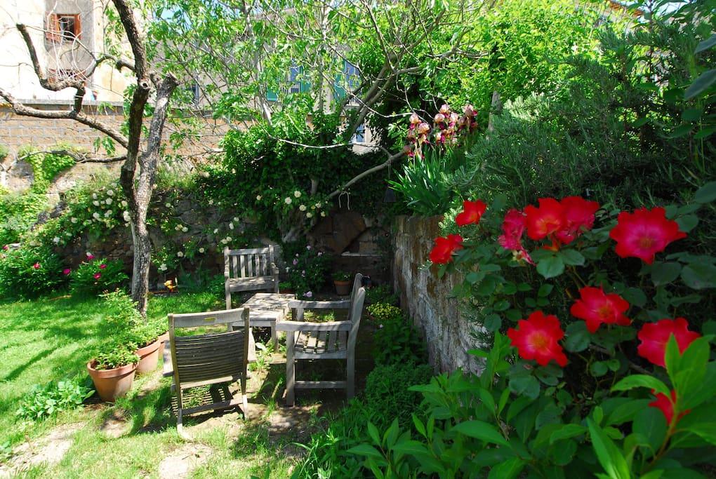 ll giardino nel mese di maggio